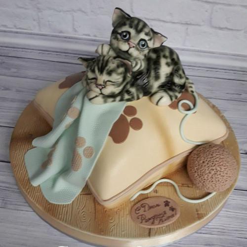 №456 Торт с котятами